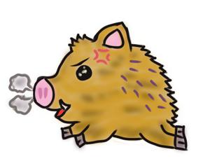 豚2.png