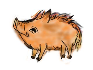 豚4.png